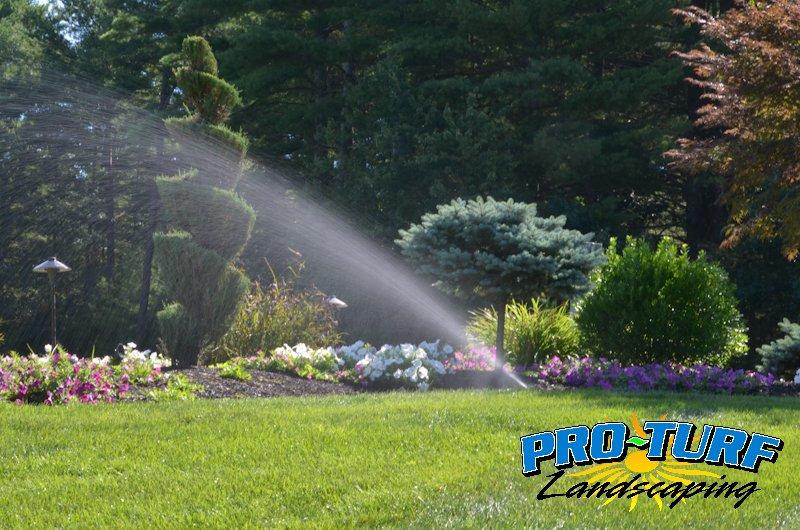 Irrigation (7)