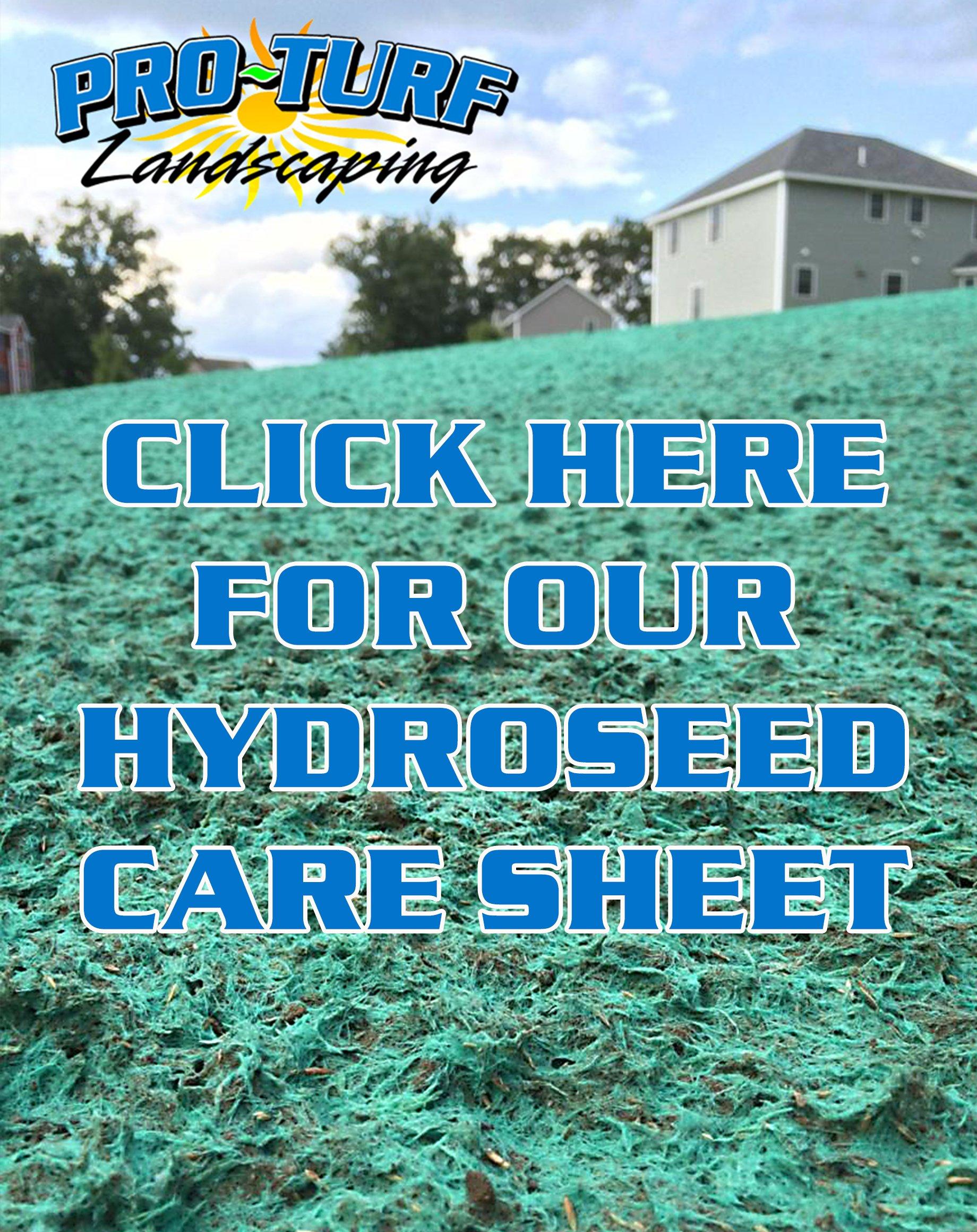 hydroseedsheet