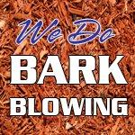 barkblowing.com